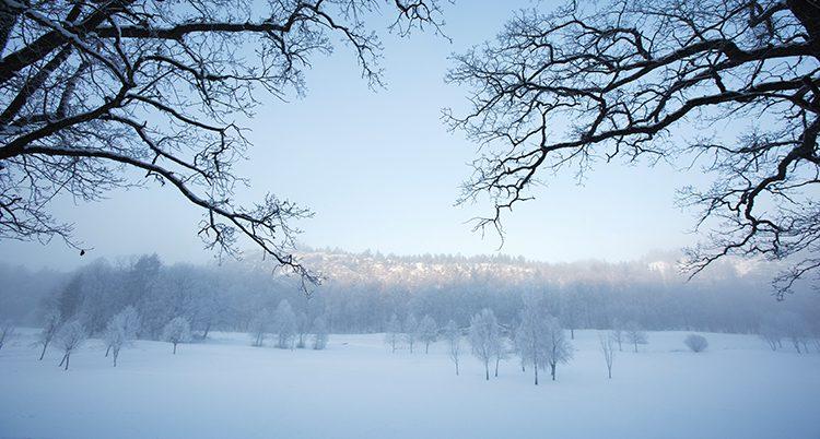 Det är kallt i Sverige.