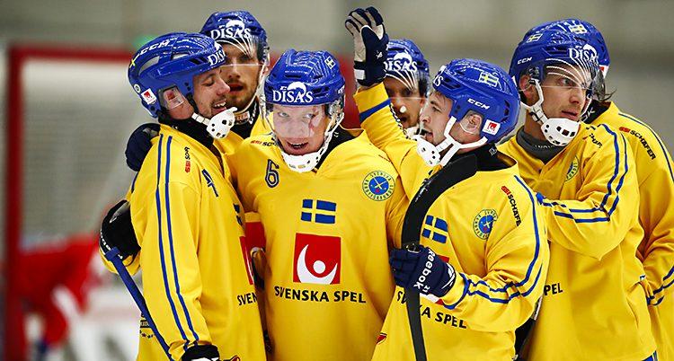 Svenskarna firar ett mål.
