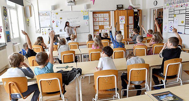 Elever i ettan i ett klassrum fotat längst bak i klassrummet. Eleverna sitter vid sina bänkar, flera räcker upp händerna. En lärare står längst fram vid katedern.