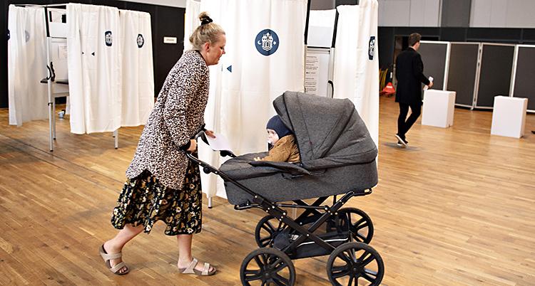 Denmark European Elections