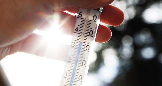 En hand håller upp en termometer som visar 35 grader.