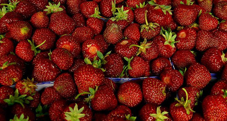 lådor med röda jordgubbar