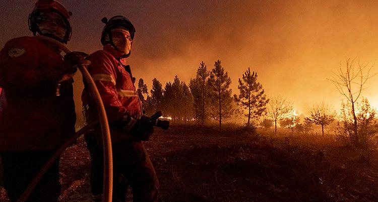 Två brandmän med en slang står framför träd som brinner