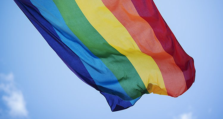 En flagga med ränder i rött, orange, gult, grönt, ljustblått och mörkblått