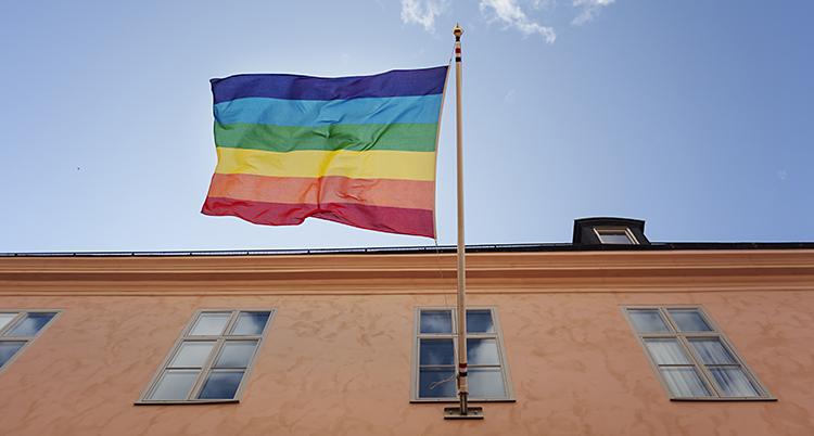 En regnbågs-flagga fladdrar i vinden