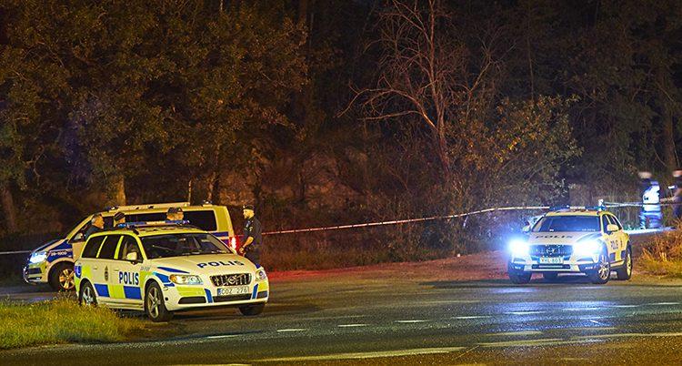 Poliser och polisbilar i mörkret på ganska långt avstånd.