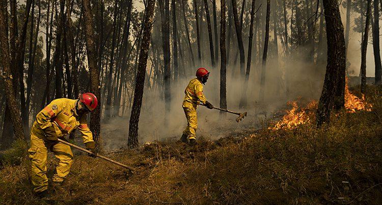 Två brandmän arbetar med en brand i skogen i Portugal. De har gula overaller och röda hjälmar.