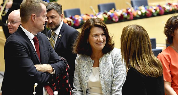 Ann Lindeler och är tillsammans med andra politiker..