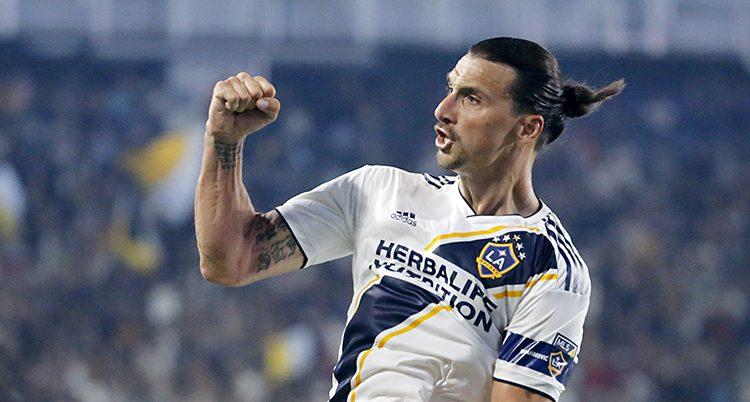 Fotbollspelaren Zlatan Ibrahimovic under en match. Han knyter sin näve och firar att han har gjort mål.