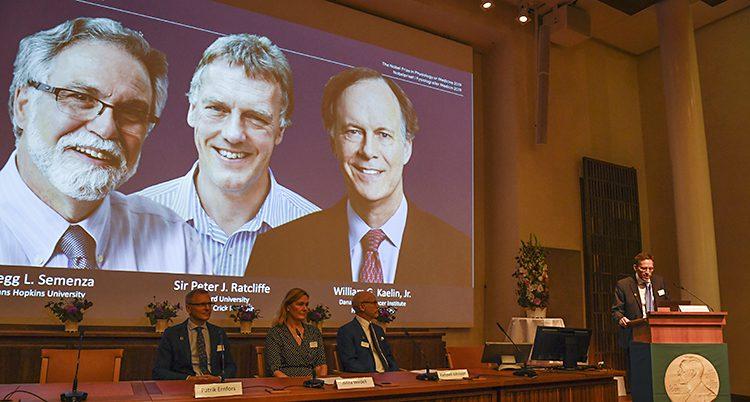 En bild på en stor skärm visar ansikten på tre glada män