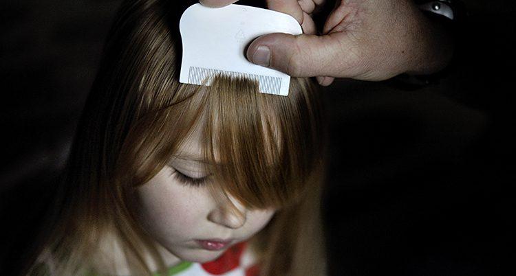 en liten flicka blir kammad med en luskamm.