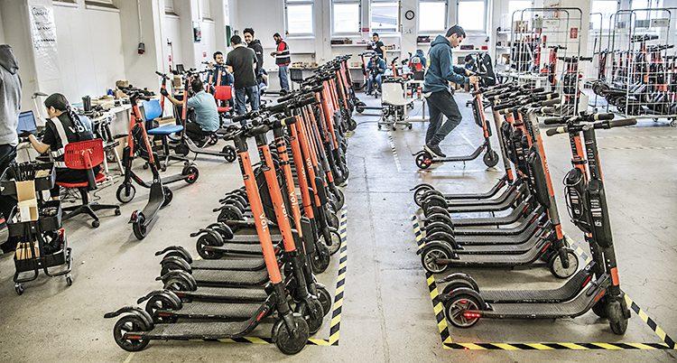Många elsparkcyklar står i rader. Npågra arbetar med att göra dem iordning
