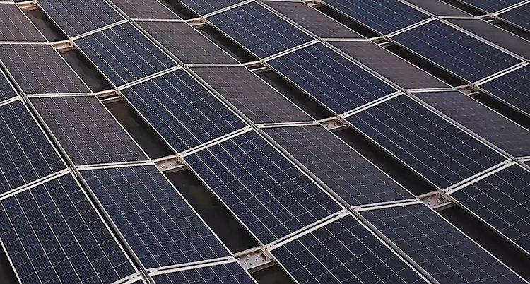 Solceller på ett tak. De ser ut som svarta plattor. De har ett rutmönster.