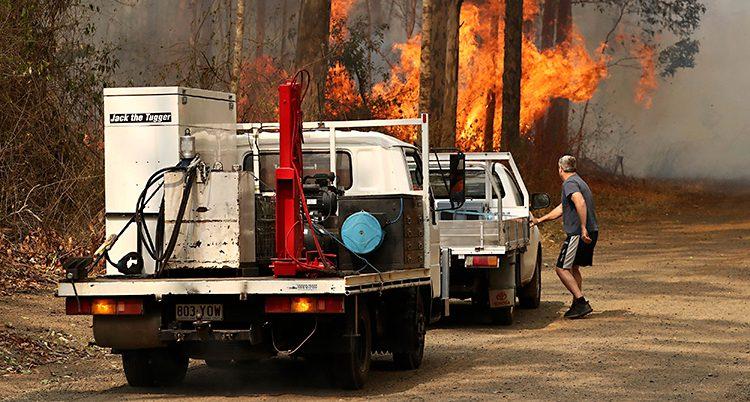 Kraftigt brinnande träd framför två pick-uper. En man är på väg in i en av bilarna.