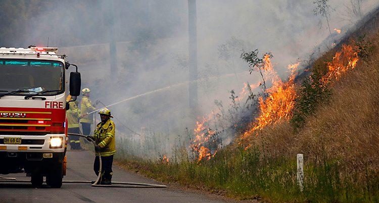 En brandbil står på en väg. Vid sidan av vägen brinner det på en slänt. Flera brandmän sprutar vatten på elden.