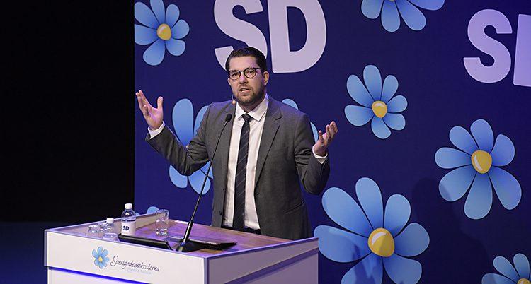 Åkesson har glasöngon och kavaj och står framför en vägg med partiets symbol, en blåsippa