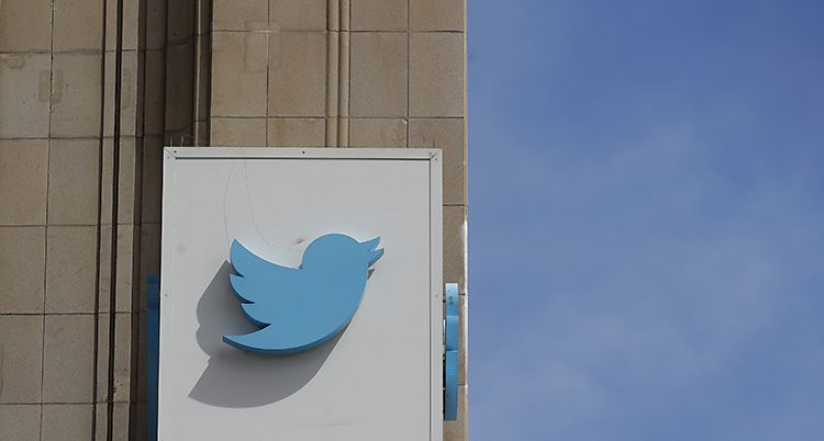 En blå fågel på en vit vägg bredvid blå himmel