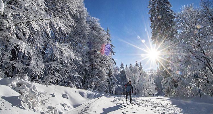 En skidåkare är ute i solen.