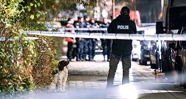 En polis och en polishund står bakom polisernas avspärrningar i Malmö. I bakgrunden syns fler poliser.