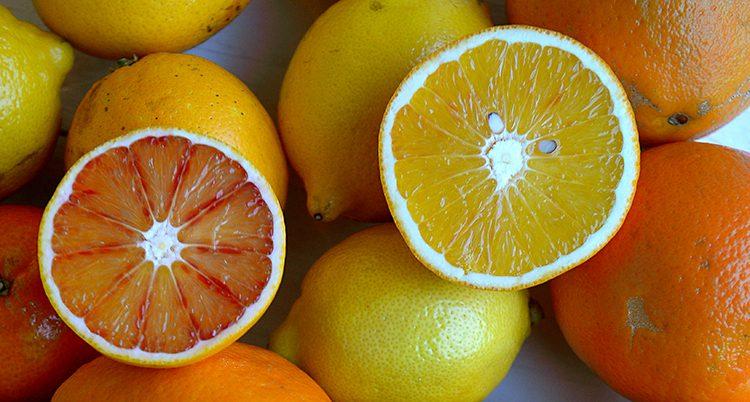 Citroner, grapefrukt och apelsiner.