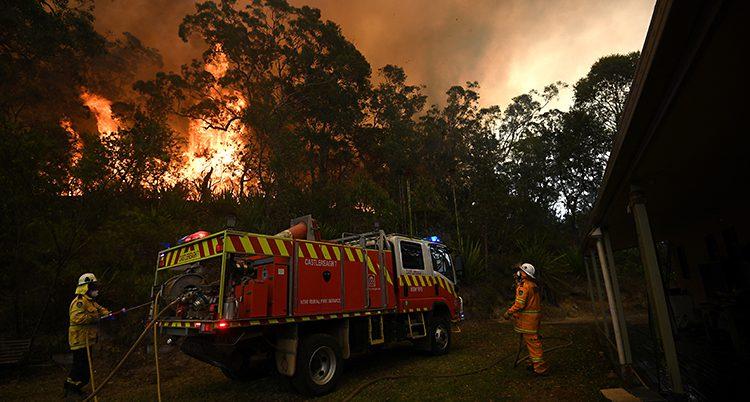 En brandman och en brandbil framför en skog som brinner.
