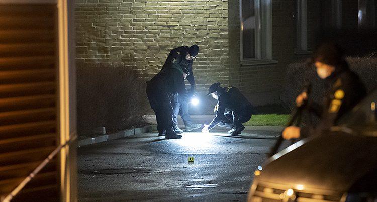 Poliser med ficklampor letar på marken.