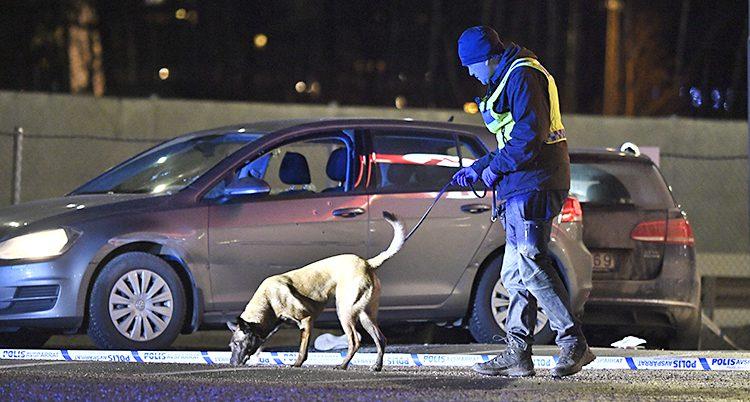 Bilden är tagen utomhus. Det är ganska mörkt. En polis går med en polishund. De letar spår. De står nära en bil.