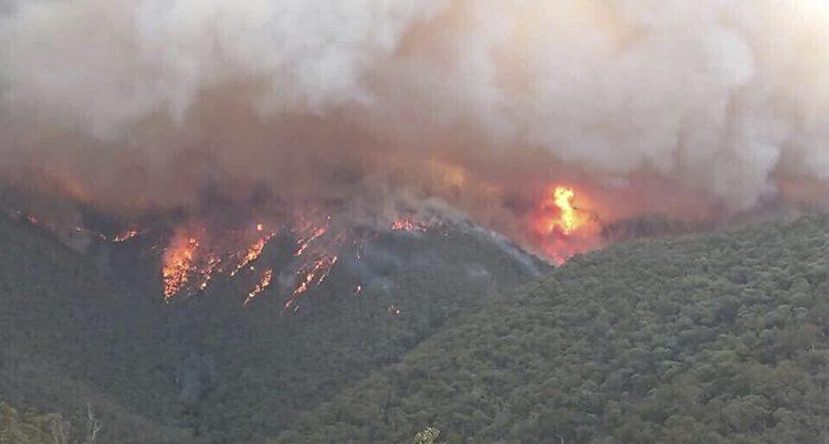 Berg och skog som brinner fotade uppifrån.