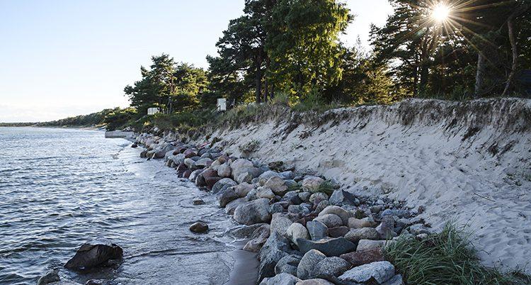 I Åhus i Skåne når vattnet redan upp till där skogen börjar.