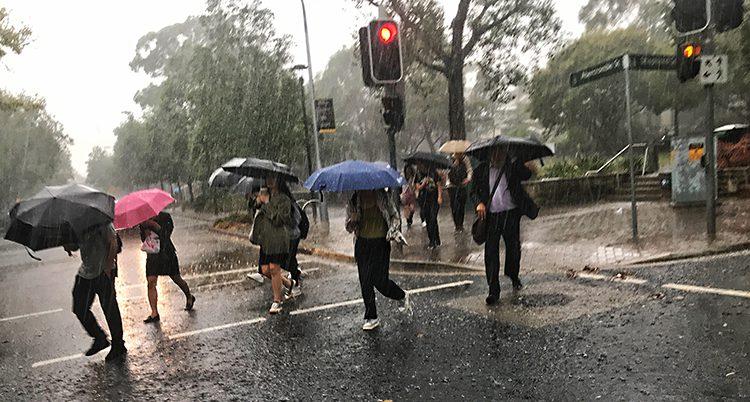 Människor har paraplyer i händerna. Det regnar.