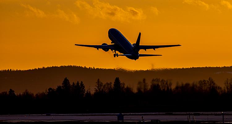 Ett flygplan lyfter. Det är tidigt på morgonen och himlen är gul.