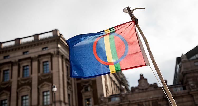 En bild på samernas flagga.