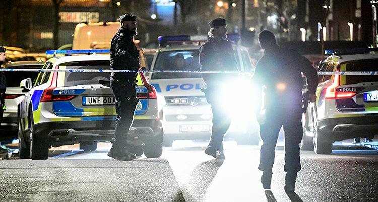 Det är kväll och mörkt. Flera polisbilar och poliser syns. De lyser med ficklampor.