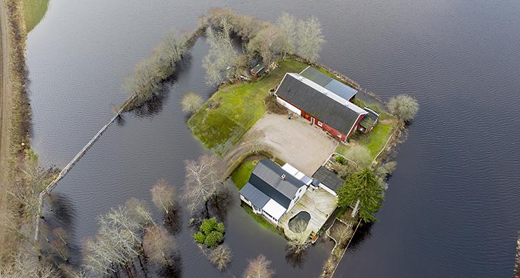 En bild tagen från en flygande kamera. På bilden syns ett hus med vatten runt.