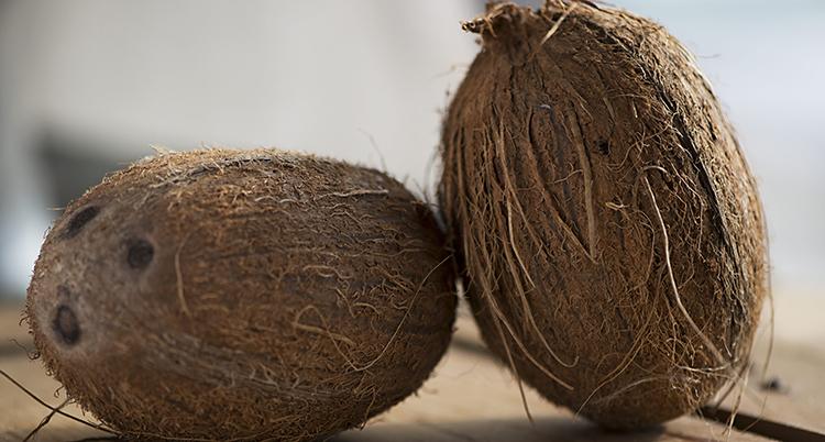 Två kokosnötter lutade mot varandra.