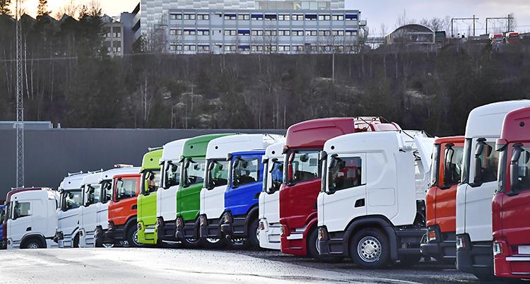 Lastbilar i olika färger står på rad