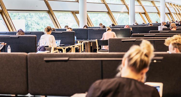 De sitter och studerar vid olika bord i ett stort ljust rum