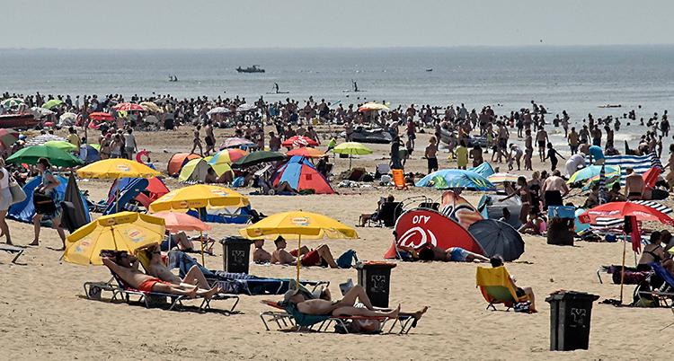 Massa människor på en strand. En del ligger under parasoll. Andra står upp. Längst bort i bilden syns havet.