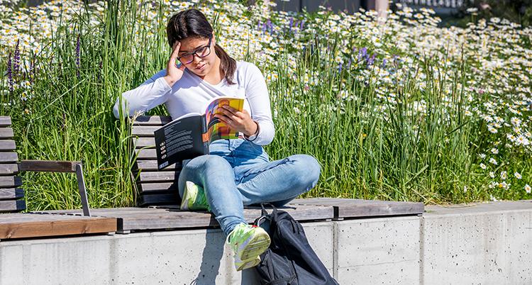 En ung tjej sitter i solen och läser i en kursbok. Bakom syns vita blommor
