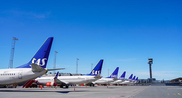 Flera flygplan står uppställda på rad på en flygplats. Himlen är alldeles blå.