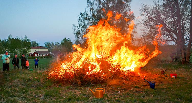 Några personer har tänt en stor eld som brinner. I bakgrunden syns några träd. Till vänster står några och tittar på elden.