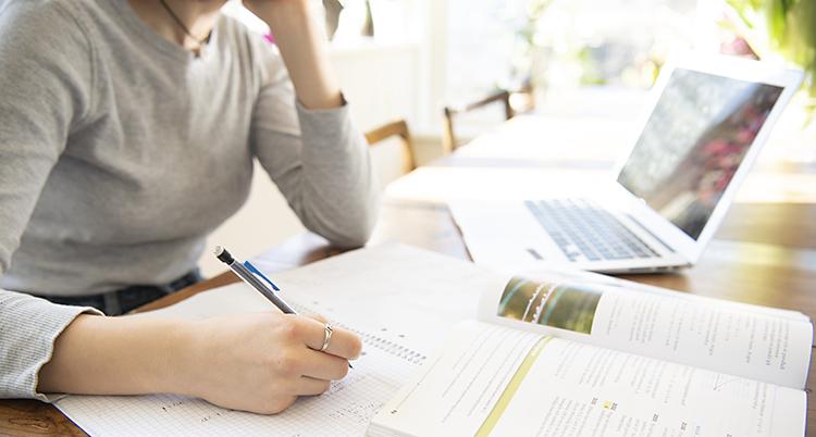 En elev sitter hemma och studerar.