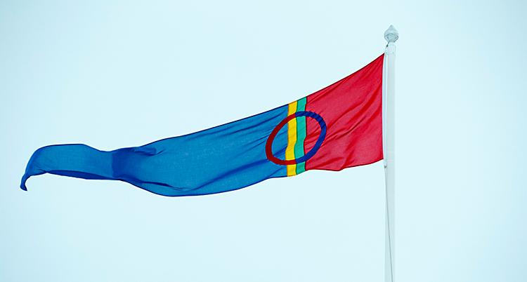 Den samiska flaggan vajar i vinden. Den hänger på en flaggstång. Den är röd, blå, grön och gul.