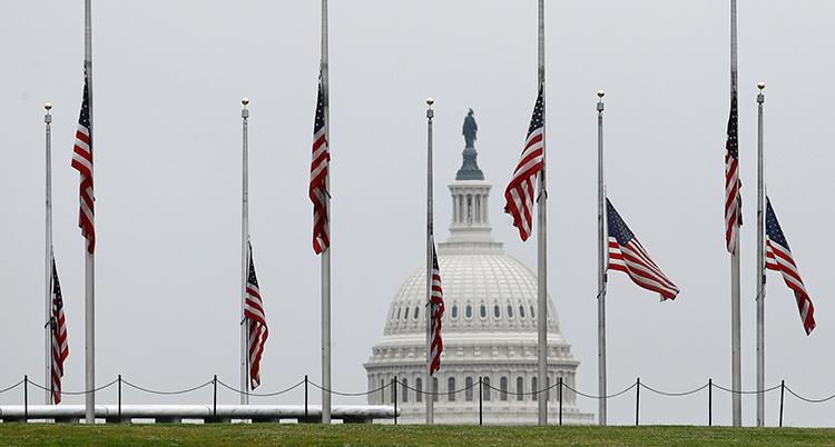 Amerikanska flaggor på halv stång framför ett vitt hus