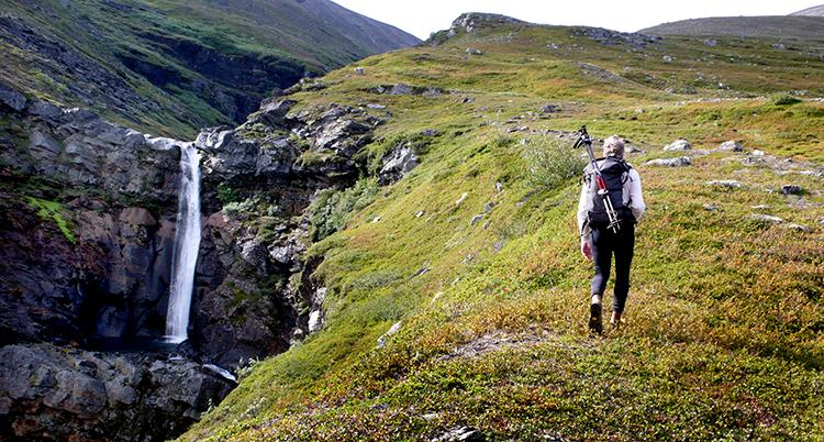 En vandrare går över fjället. Ett vattenfall och en ravin vid sidan.