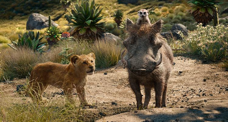 EN bild från filmen lejonkungen.