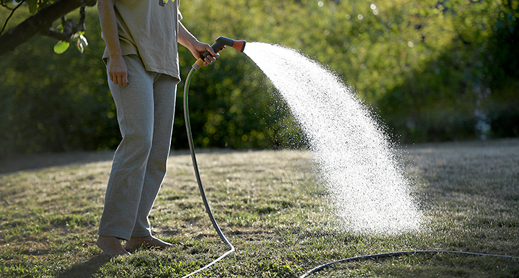 En person står på en gräsmatta. Personen har en slang med ett munstycke. Personen vattnar gräsmattan.