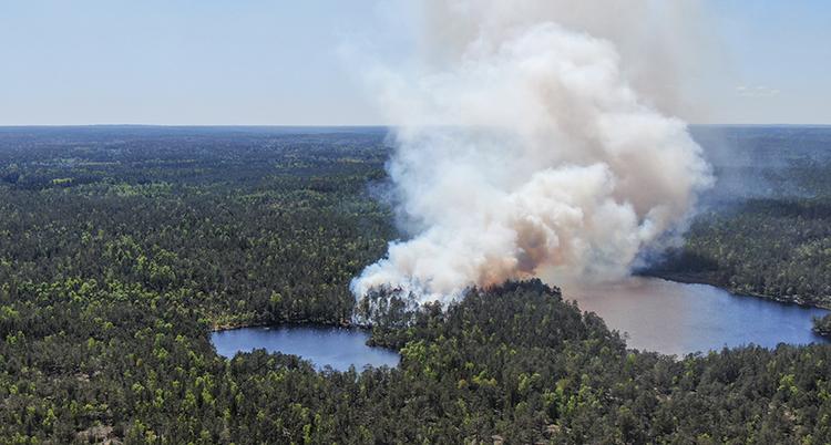 En flygbild över en stor skog och två sjöar. Kraftig vid rök kommerer från skogen.
