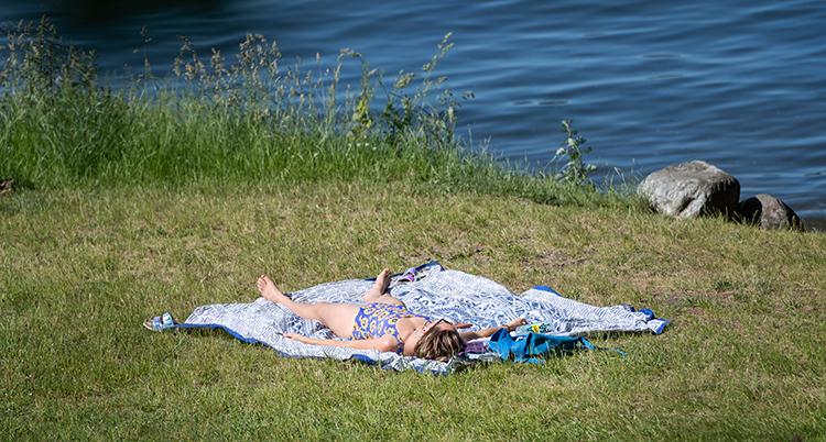 En kvinna ligger i baddräkt och solar på en gräsmatta.