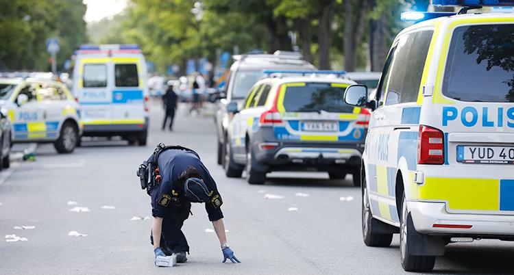 Flera polisbilar står parkerade på rad på en gata. En polis undersöker något på marken.